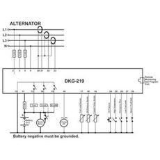 DKG-219 Автозапуск генератора, фото 2